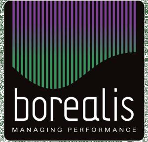 Borealis_Consulting_logo